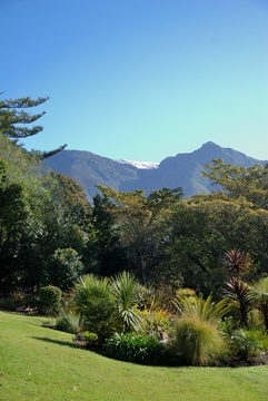 Swellendam Accommodation Braeside Guest House - Garden view